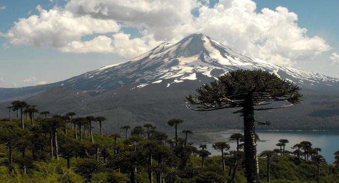 Photo of Parque Nacional Conguillío