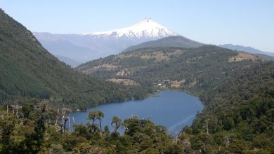 Photo of La belleza del Parque Nacional Huerquehue